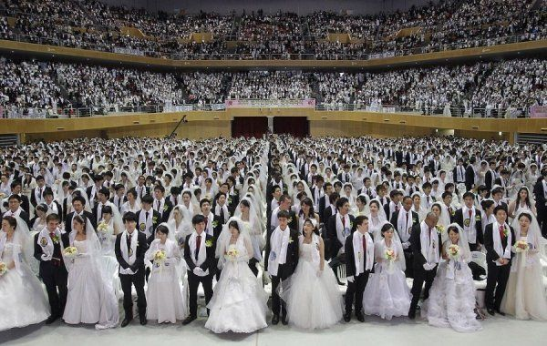 Весілля на стадіоні улюбленої команди: всі тонкощі проведення свята